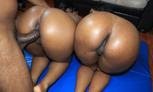 Hot black girls strips to flaunt hot ebony booty & give busty titjob in 3some