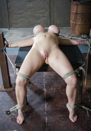 Restrained female Alyssa Lynn endures tits torture and and being hung