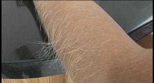 Amateur female Lori Anderson displays her really hairy arms