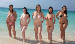Terry Nova and 4 of her big titted girlfriends model in bikinis at the beach